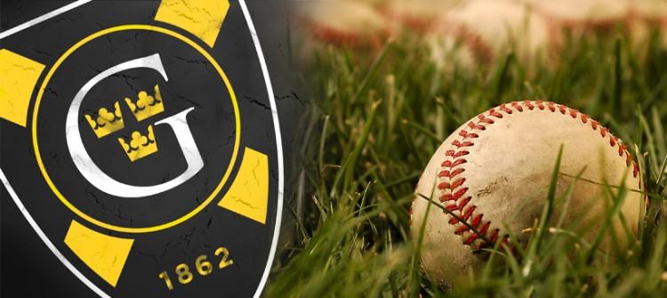 baseball_grassbanner