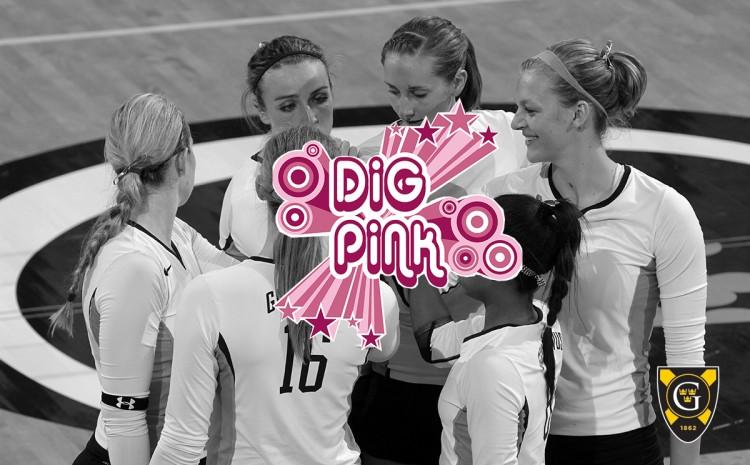 Dig Pink Banner