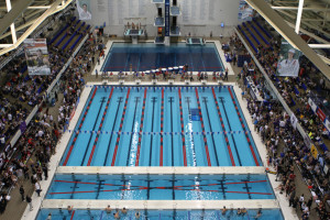 A view from the rafters of the IUPUI Natatorium.